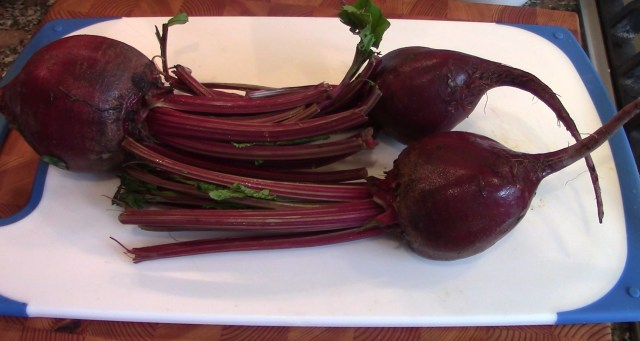 Beets ready for cutting