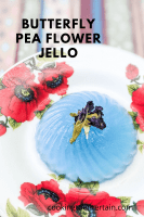 butterfly pea flower jelly pin