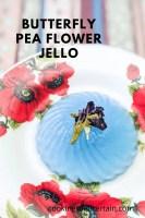butterfly pea flower jelly pin