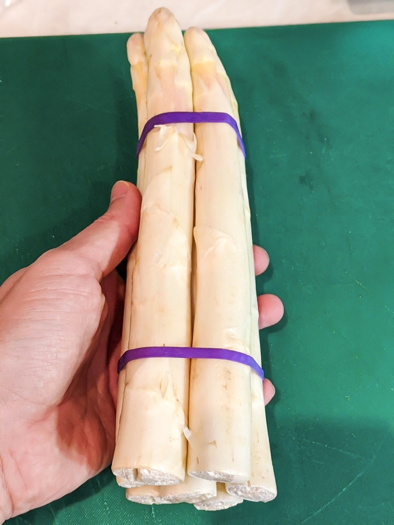 Bundle of fresh European white asparagus