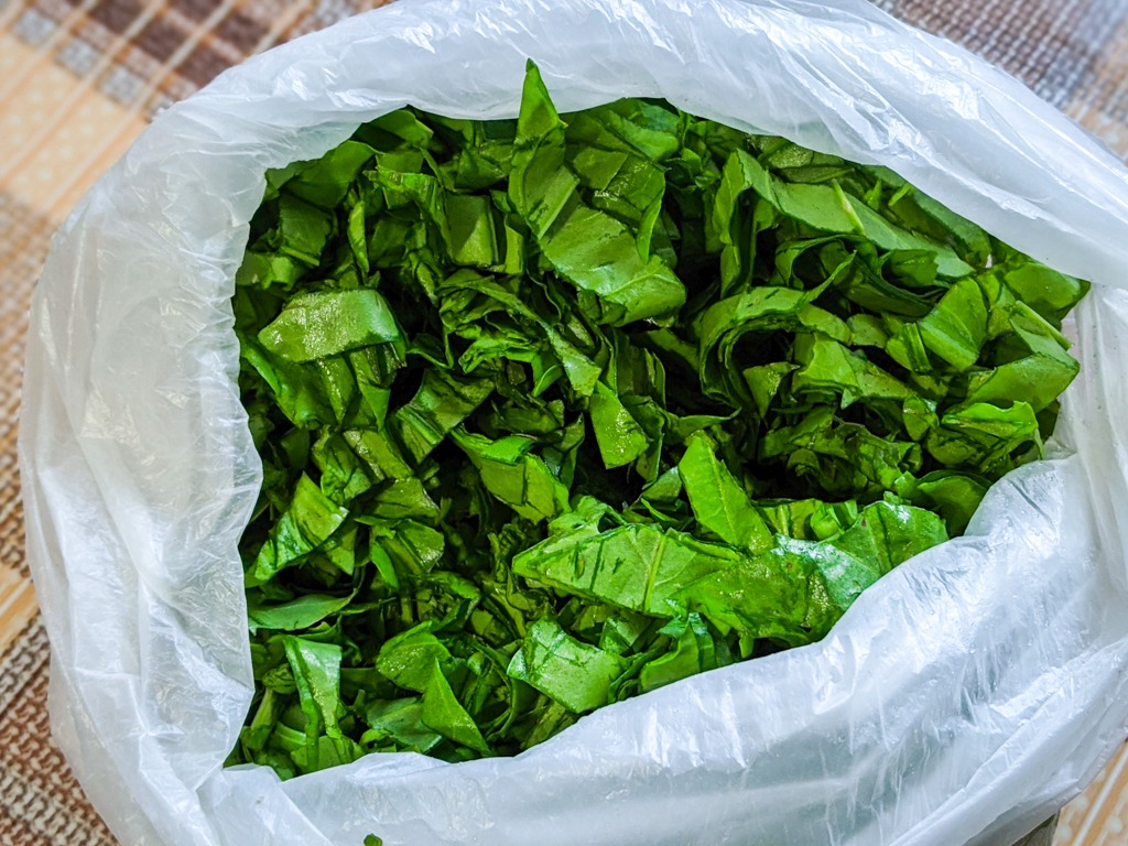 chopped sorrel leaves in a bag for the green borscht