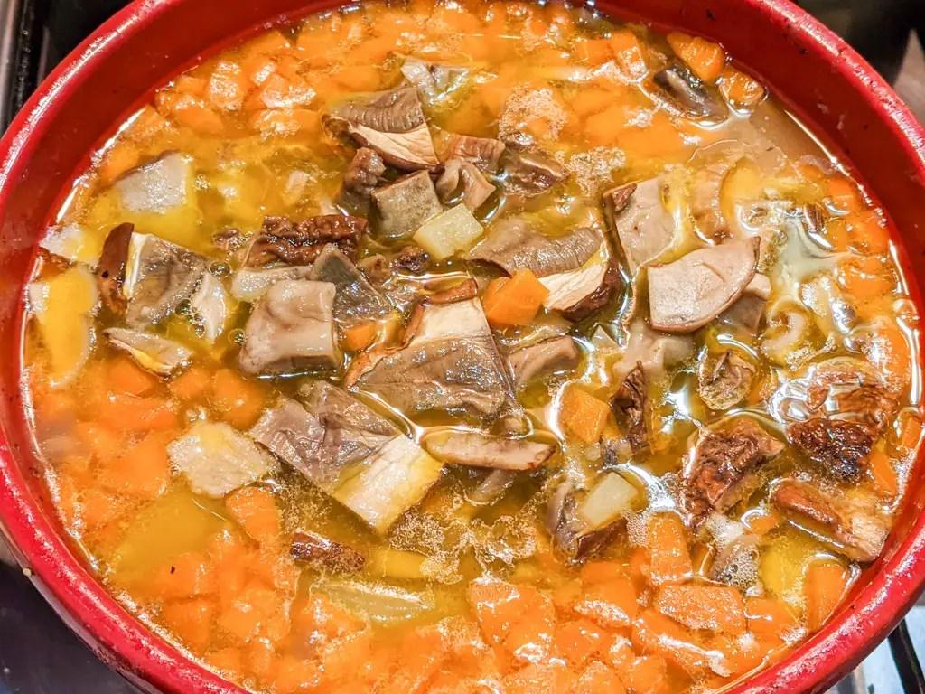 Carpathian Mushroom Soup in a pot