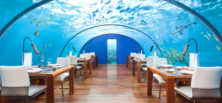 Under Sea Restaurant in MALDIVES