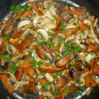 Wild Mushrooms Stew