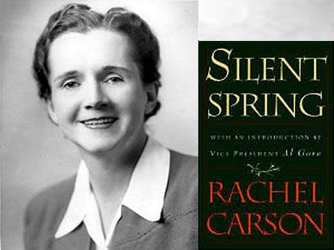 Image result for Rachel Carson
