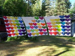 Photo by Lisa of Sunlight in Winter Quilts