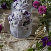 No Churn Blueberry Ice Cream