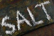 The Lesson of Salt   Ruhlman