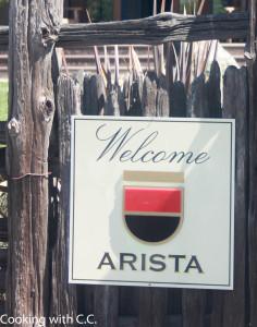 Arista-1HR