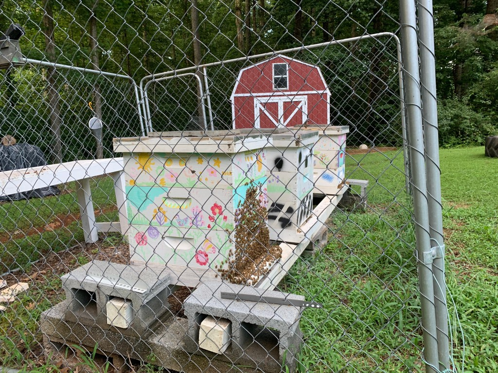 Beehives in fencing