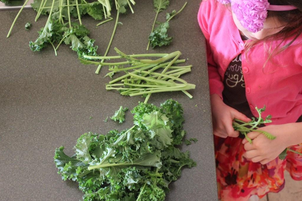 Kid Approved Tasty Thursday Program and Recipes