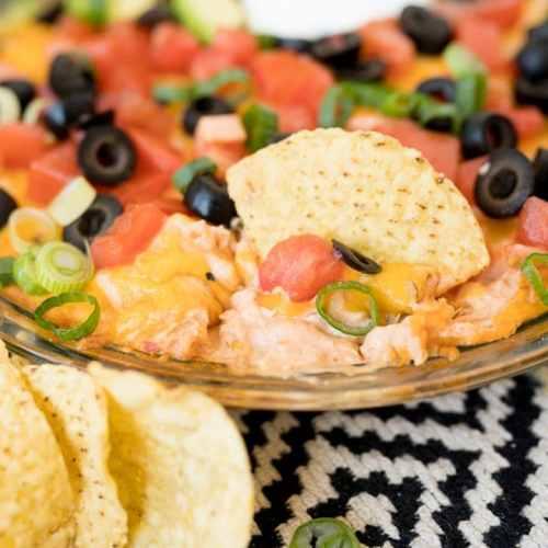 creamy salsa and chicken chip dip