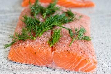salmon-6000