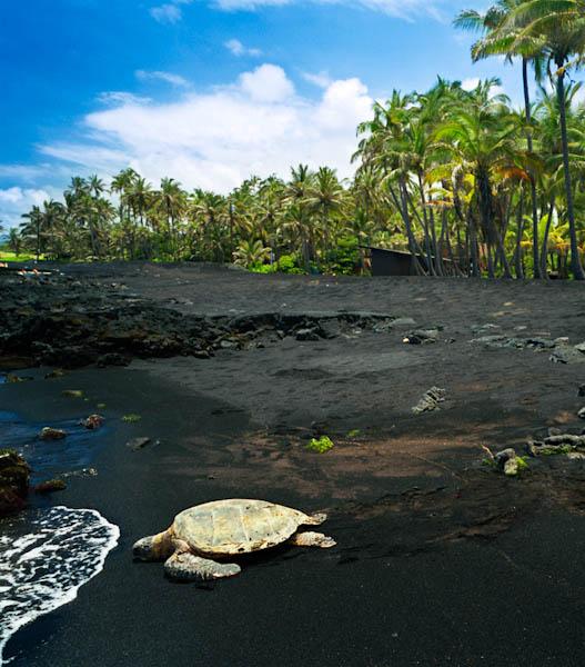 Punalu U Beach Park Pahala Hawaii