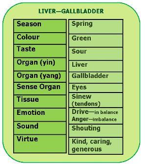 liver-gallbladder