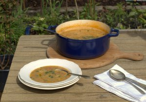 Low FODMAP, vegetarian, soup