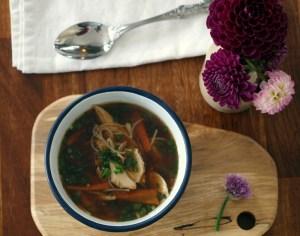 Low FODMAP Chicken Noodle Soup