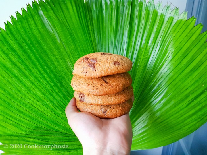 amazing chewy chocolate chip cookie with big green leaf in the background