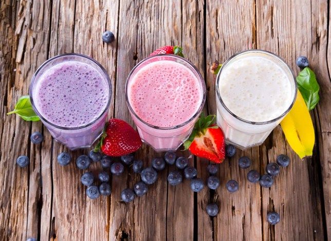 Choosing the Right Protein Blender 2