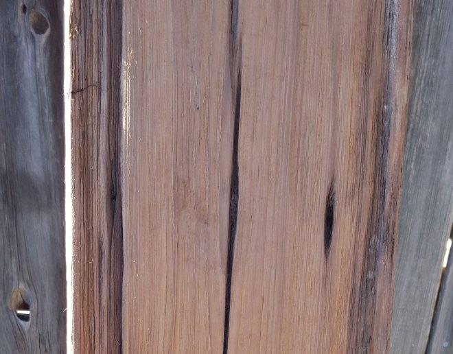 Mushroom Board