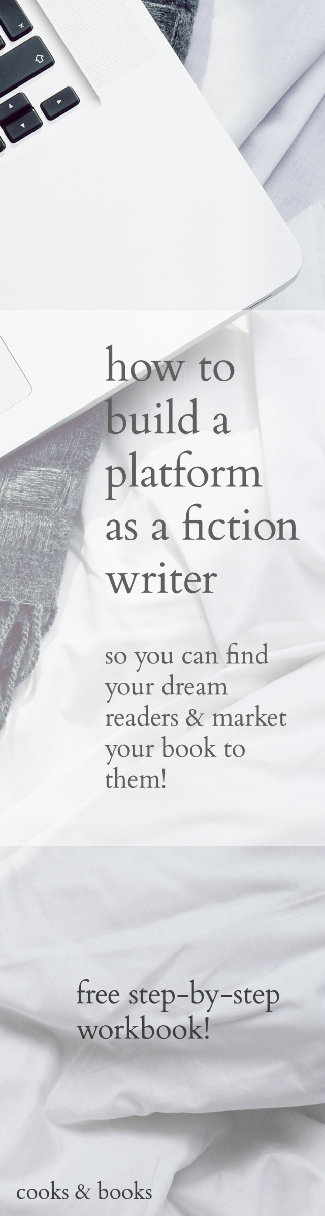 How to build a platform as a fiction writer (long)