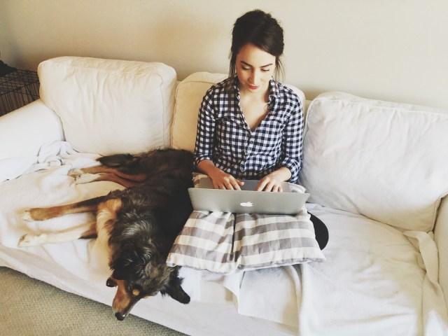 literary agent blog