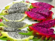 dragon-fruit-1813426_640