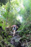trails Bako National Park