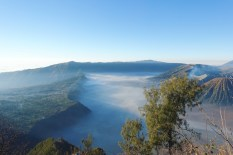 sunrise bromo vegan13