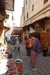 Fez travel14