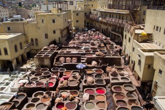 Tanneries fez travel