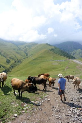 Travel Guide Kazbegi