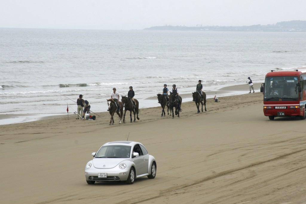 千里浜なぎさドライブウェイ,車,砂浜,馬