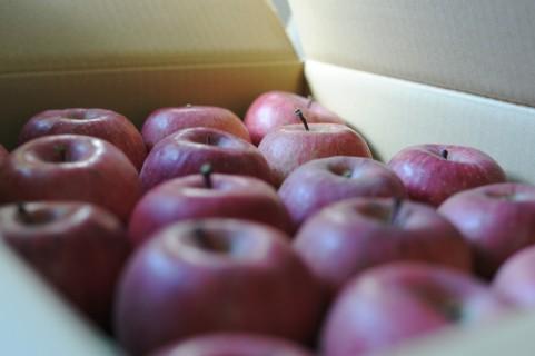 風邪の時のりんごって効果ある?レシピは?