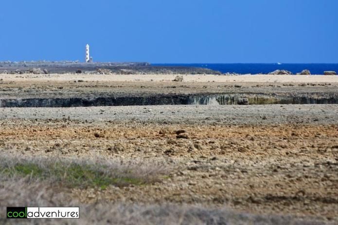 Spelonk, Lighthouse, Rancho Washikemba, Bonaire