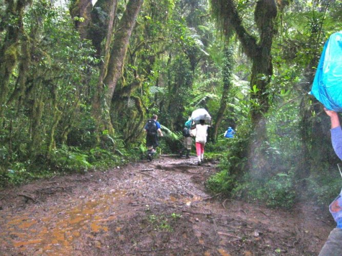 Kilimanjaro Machame Route Day 1