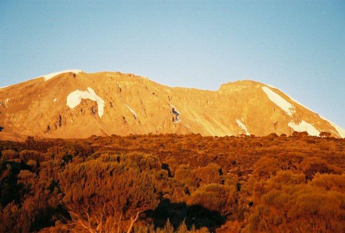 Kilimanjaro Machame Route Day 2
