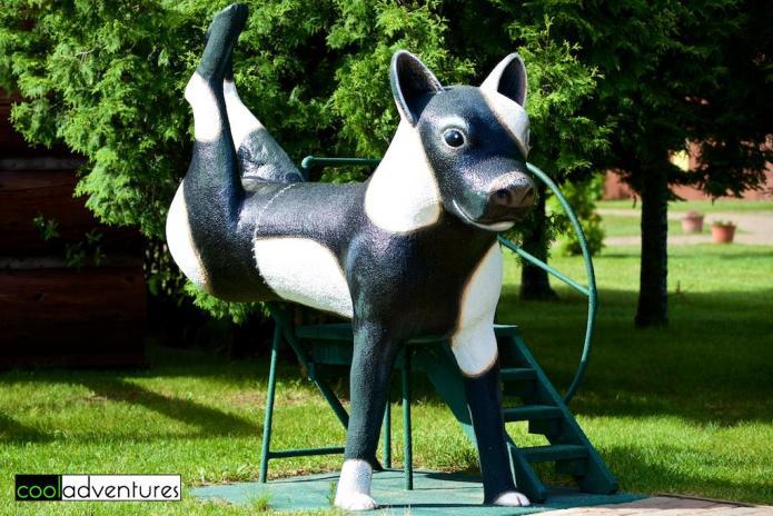 Sport, the Reversible Dog, Paul Bunyan Land, Brainerd, Minnesota