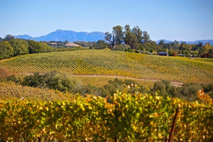 Sonoma Country Wineries