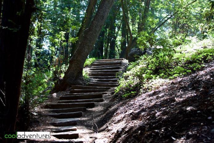 Pfeiffer Big Sur State Park, Big Sur, California