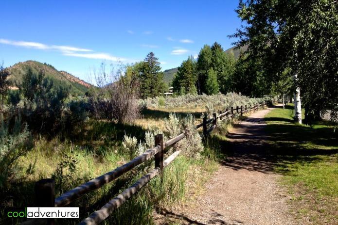 Hiking Meadows Trail, Aspen, Colorado