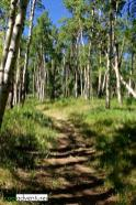 River Run Trail near Aspen, Colorado