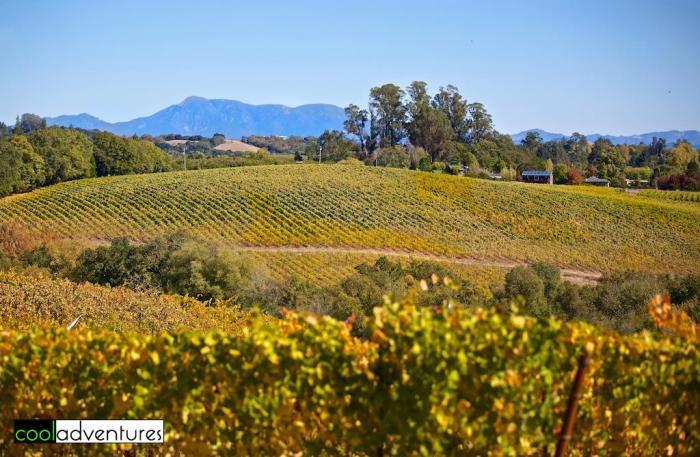Iron Horse Winery, Sonoma County, California