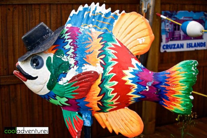 Detroit Lakes Sunfish, Detroit Lakes, Minnesota