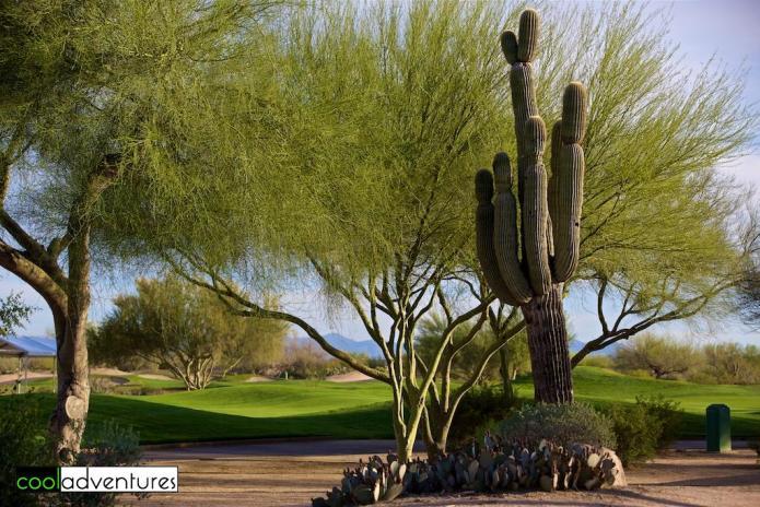 Wildfire Golf Club at JW Marriott Desert Ridge, Phoenix, Arizona