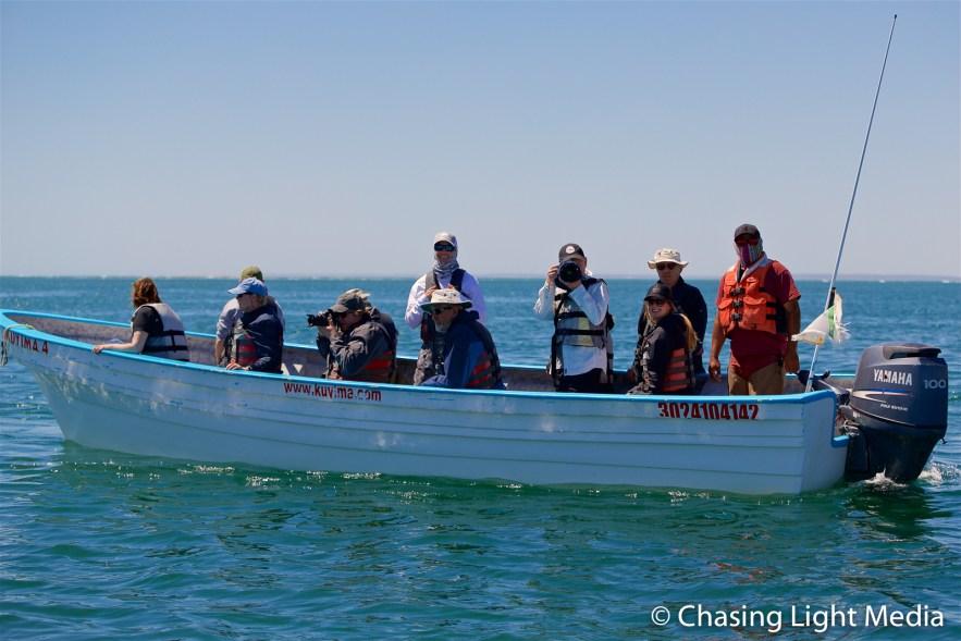 Searcher group in a panga at Laguna San Ignacio, Baja Mexico