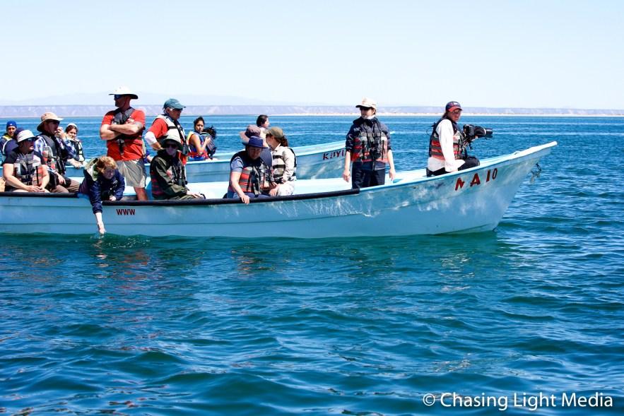 Panga carrying Kim Hull & Searcher passengers, San Ignacio