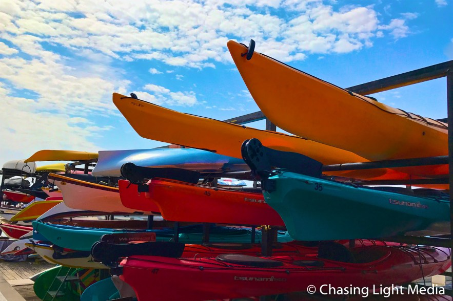 Canoes stacked at Toronto Harbourfront