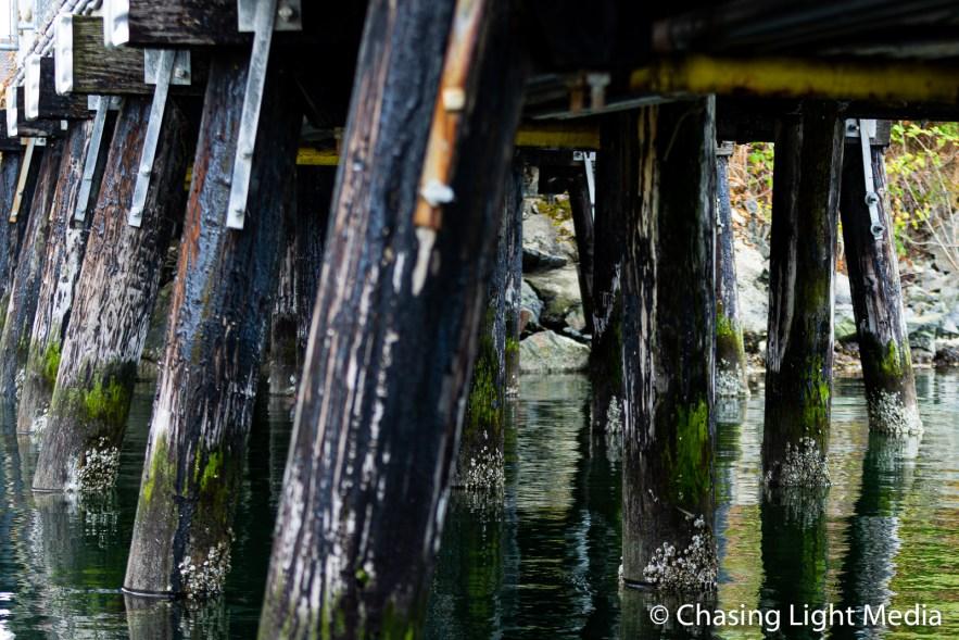 Under a pier, Victoria, Vancouver Island, BC
