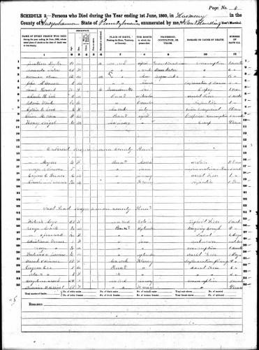 1860 U.S. census, Susquehanna County, Pennsylvania, mortality schedule, p. 4, line 3, Solomon Stam